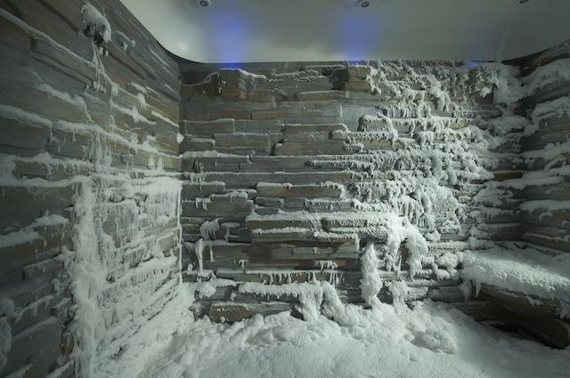 Snow Room Cruise Hive