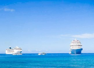 Essential Items for a Family Cruise