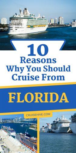 So you've booked your cruise from Florida and now you want to know more about the state which offers so much. Read these cruise and travel tips.