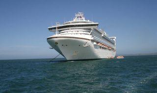 Bed Bugs On Cruise Ships Princess