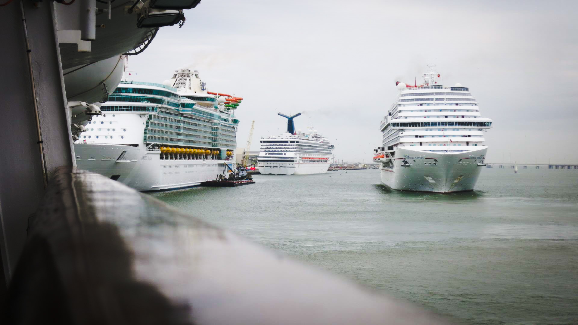 Cruise Ships Stranded by Hurricane Harvey