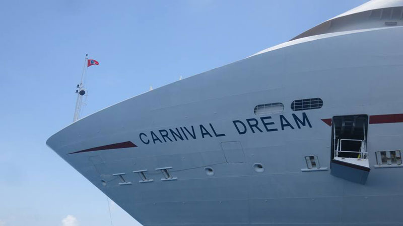 Carnival Dream Bow