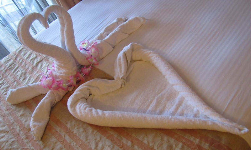 Towel Swan on Carnival Cruise