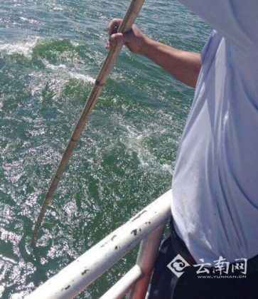 Chinese Passenger Tried Overboard