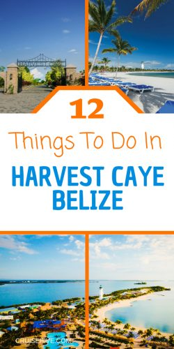 Things to do when on your cruise vacation and the cruise ship visits Norwegian Cruise Line's private island of Harvest Caye, Belize.