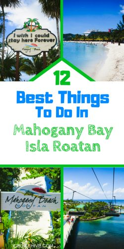 12 Best Things To Do In Mahogany Bay Isla Roatan