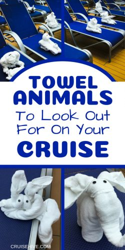 Here are cruise tips on Towel Animals to look out for on your next cruise vacation.