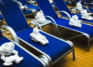 Towel Animals to Look for on Your Cruise