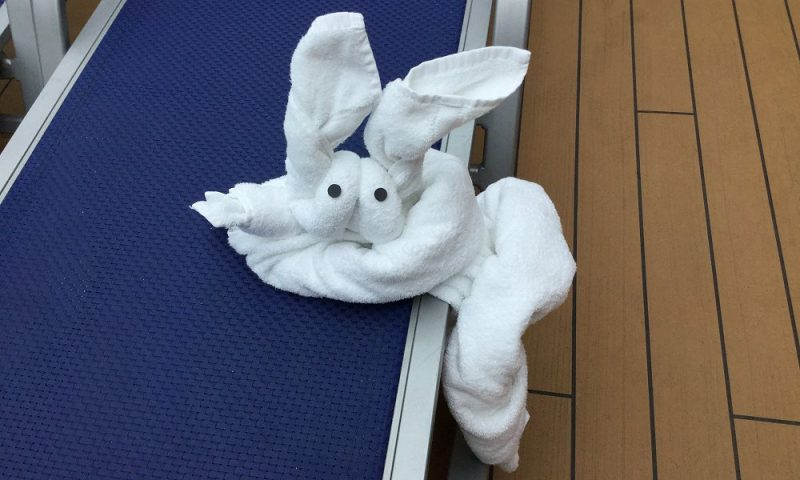 Cruise Towel Animal
