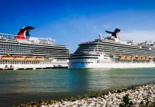 Carnival Cruise Ships in Port
