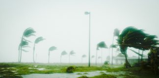 Florida Hurricane Impact