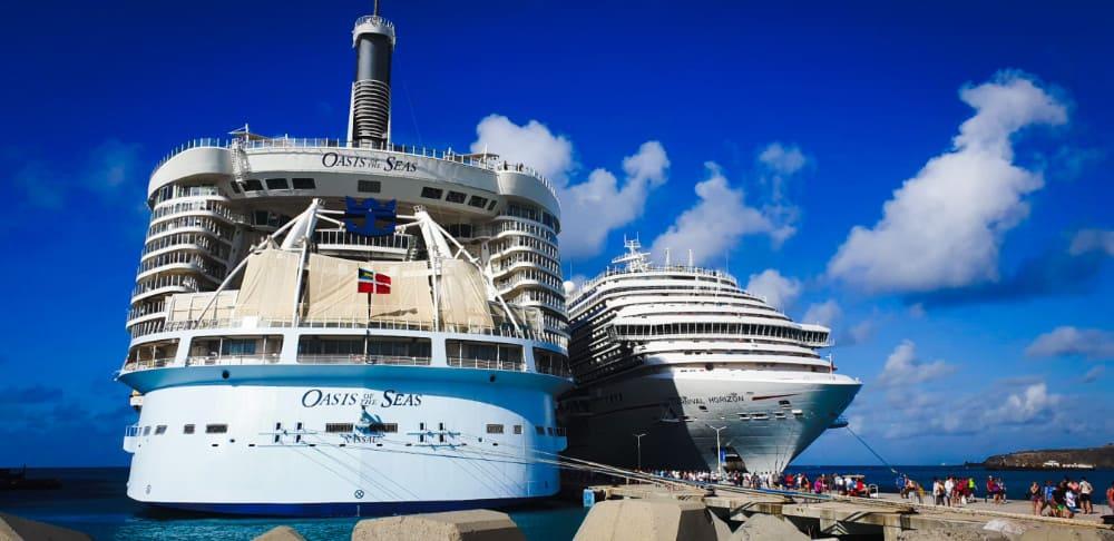 Large Cruise Ships