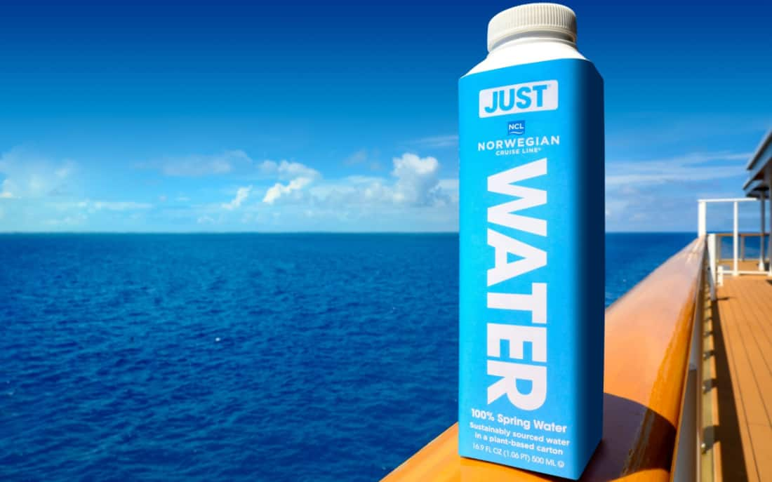Norwegian Cruise Line Water Bottle