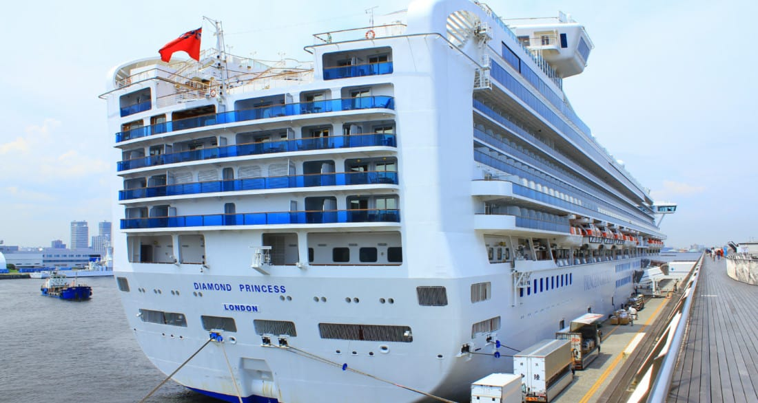 Diamond Princess Docked in Japan