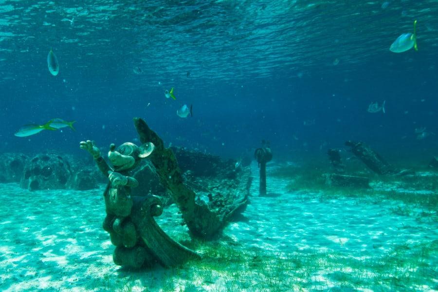 Snorkel Lagoon at Castaway Cay