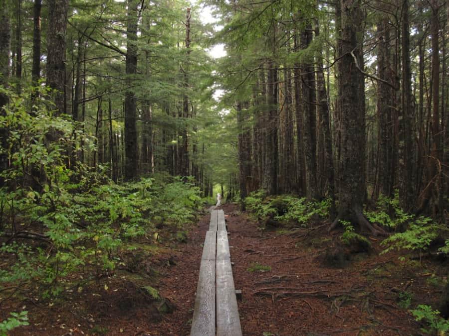 Gaven Hill Trail, Sitka, Alaska