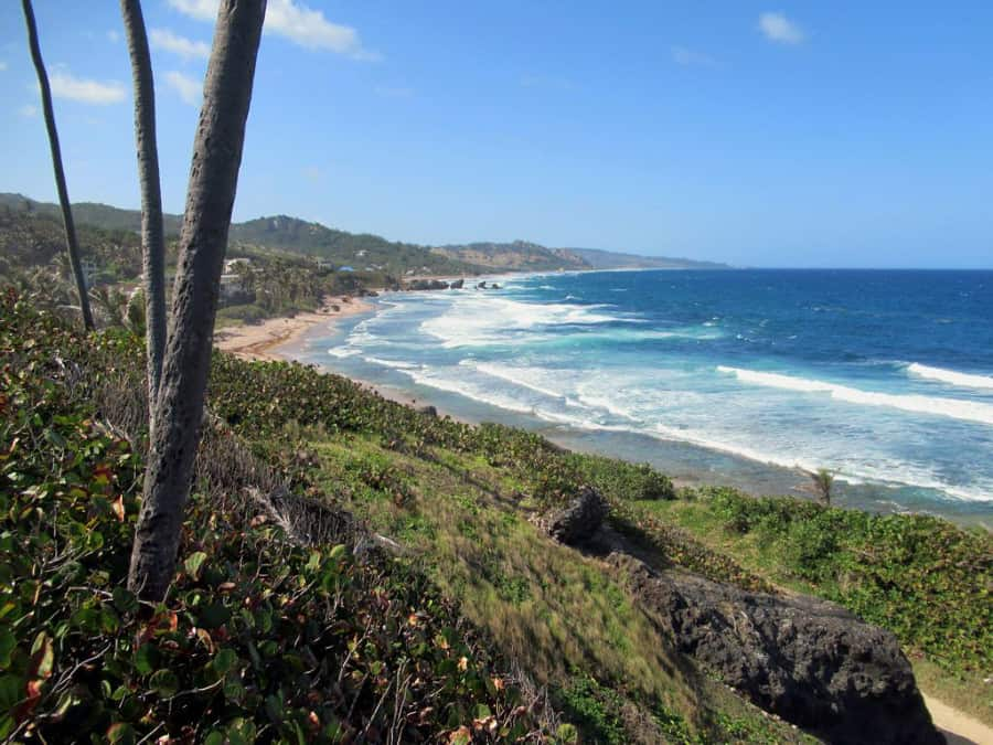 Barbados Northeast Coast Hike
