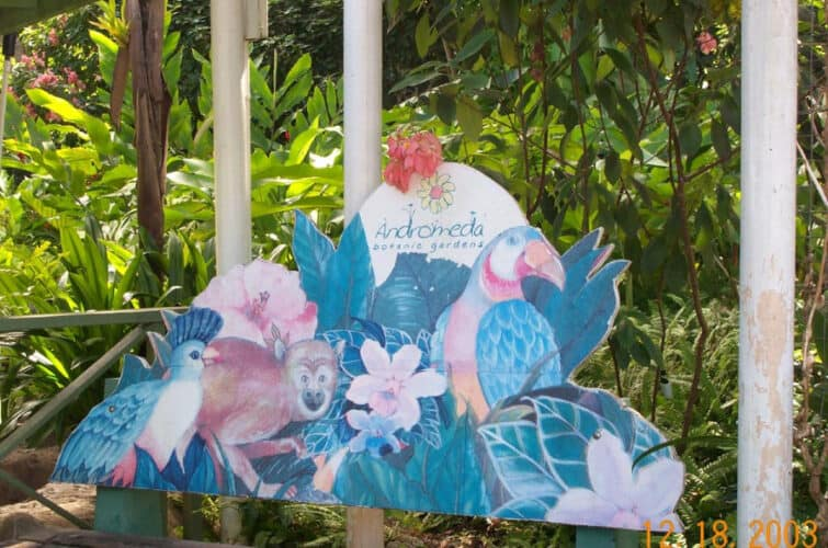 Andromeda Botanical Gardens, Barbados