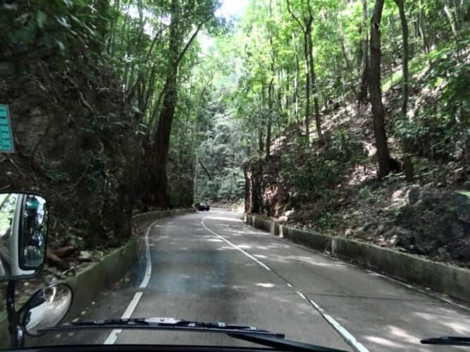 A Drive Through Fern Gully, Jamaica