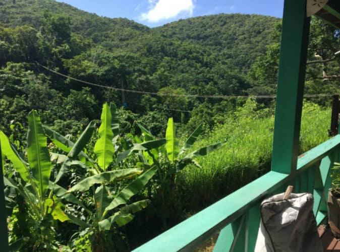 Zipline on the Island