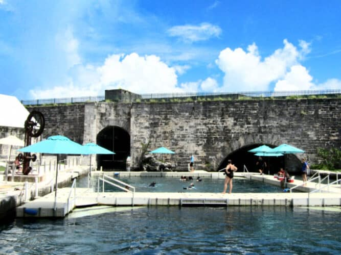 Dolphin Quest at the Royal Naval Dockyard