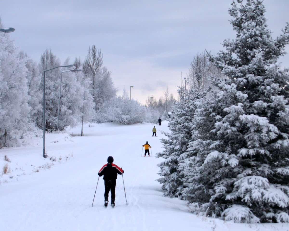 Skiers in Kincaid Park