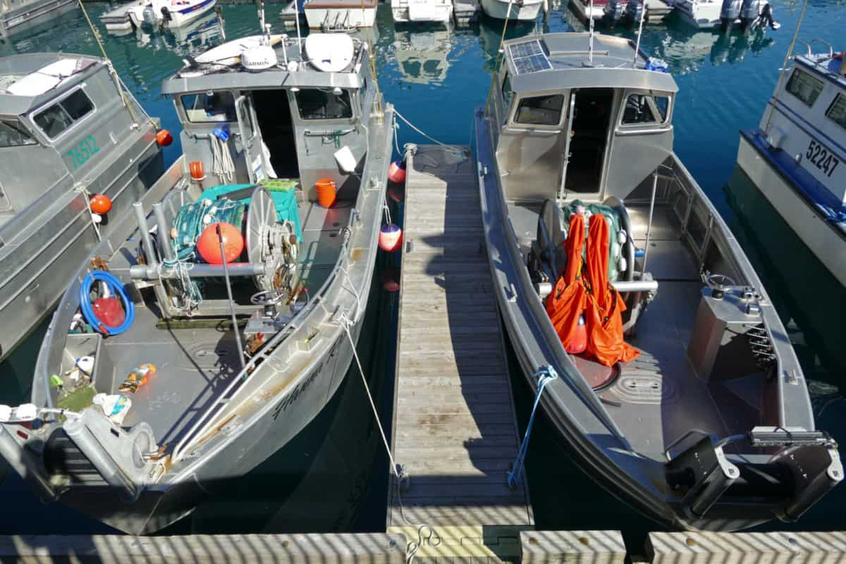 Whittier Fishing Boats